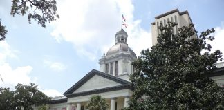 Photo of Florida's Historic Capitol and Florida State Capitol
